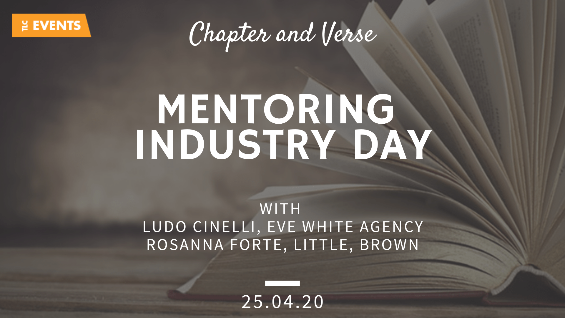 Mentoring Industry Day