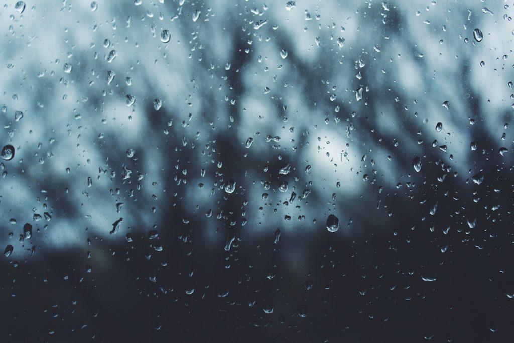 Rain drops, Noah Silliman